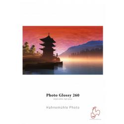 Hahnemühle Photo Glossy (Bogen)
